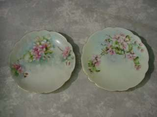 Pair ANTIQUE FLORAL PLATES Germany Bavaria HAND PAINTED Dogwood Fine