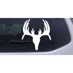 White 6in X 5.5in    Deer Skull Mount indeginous Hunting And Fishing