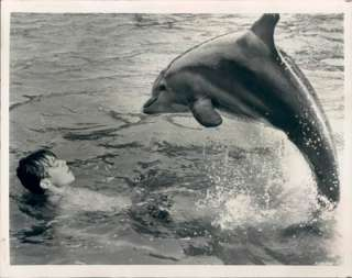 the film and TV Porpoise and actor Luke Halpin. Dated July, 1964