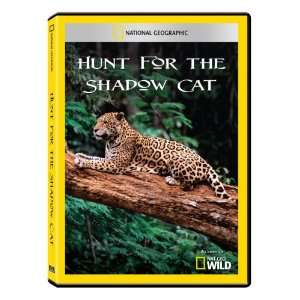 National Geographic Hunt for the Shadow Cat DVD R