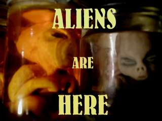 ALIEN BABY IN JAR UFO AREA 51, ALIEN FETUS, ROSWELL #79