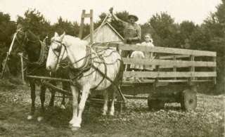 RPPC HORSE DRAWN FARM WAGON FARMING VINTAGE POSTCARD