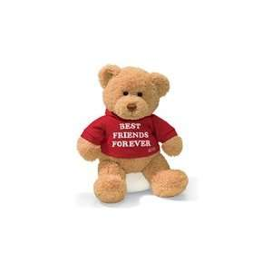 Personalized Best Friends Forever Teddy Bear Gift   12