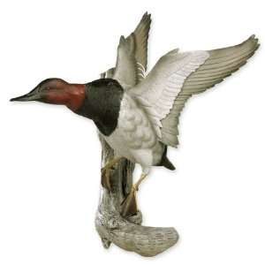 Flying Canvasback Duck Wall Sculpture