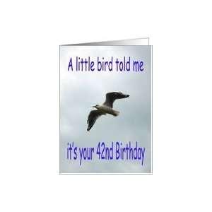 Happy 42nd Birthday Flying Seagull bird Card Toys & Games