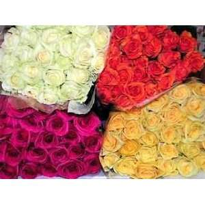 Premium California Grown Long Stem Roses Grocery & Gourmet Food
