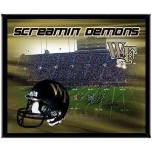 Wake Forest Demon Deacons WFU NCAA Basketball 8 X 10 Framed Logo