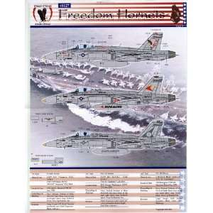 18 C Freedom Hornets #1: VFA 81, 105, 147 (1/48 decals): Toys & Games
