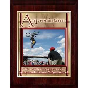 Appreciation (X Games) 10 x 13 Plaque with 8 x 10 Gold Plate and
