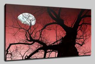 LANDSCAPE SUNSET CANVAS PRINT ART MANY SIZES & COLOURS & FREE POSTAGE