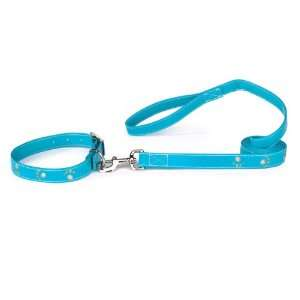 Zack & Zoey Leather Sparkle Paw Dog Neck Collar, 14 to 18 Inch
