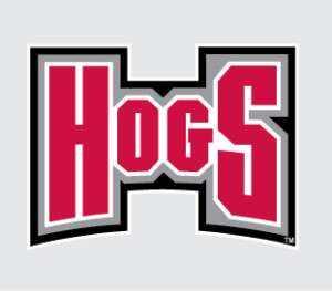 Arkansas Razorbacks HOGS Logo vinyl decal sticker 6