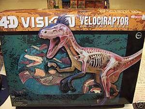 4D MASTERS 4D VISION VELOCIRAPTOR ANATOMY MODEL KIT